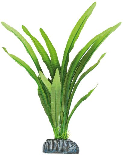 Plante en Soie Echi Magdaleniensi 30.5 cm Aquatic Plants