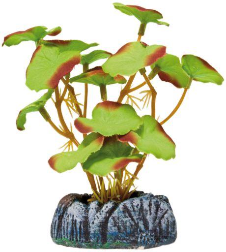 Plante en Soie nénuphar 2S 138 gr Aquatic Plants