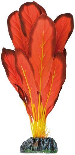 Plante en soie Echinodorus 106 gr Aquatic Plants