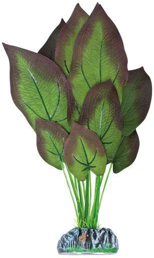 Plante en soie Nymphe 20 cm Aquatic Plants