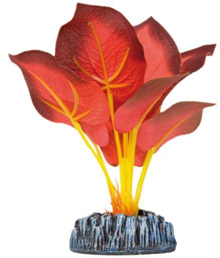 Plante en soie Nymphe Rouge 20 cm Aquatic Plants