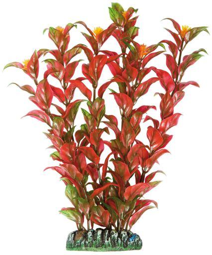 Plante en Plastique Alternanthera Bordeaux 8 KG Aquatic Plants