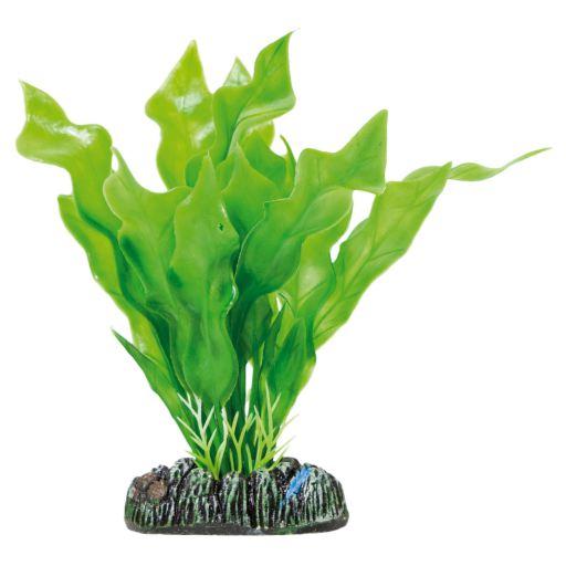 Plante plastique Aponogeton Crispus 13.5 cm Aquatic Plants