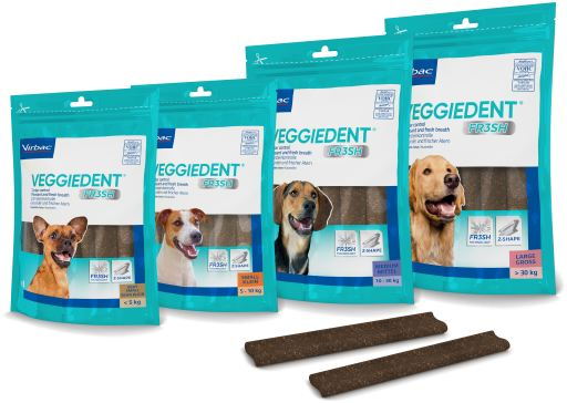 VeggieDent Fresh for Bocudental Problems in Dogs