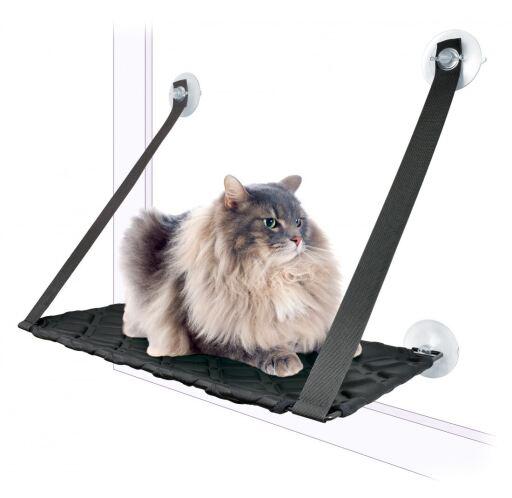 Hamaca Gato Con Ventosa Negra 59X33Cm 59x33 cm Nayeco