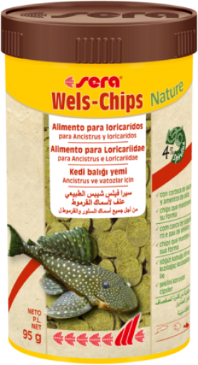 Wels Chips Nature