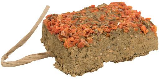 Clay en pierre avec carotte 100 gr Trixie