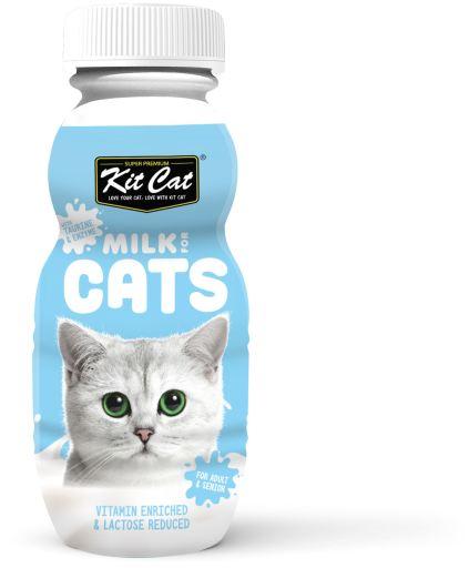 Snack Adulte 100% lait naturel 250 ml Kit Cat