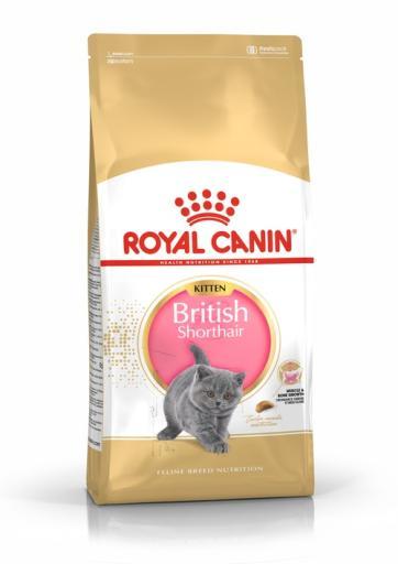 Kitten British Shorthair pienso para gatito de raza 2 KG Royal Canin