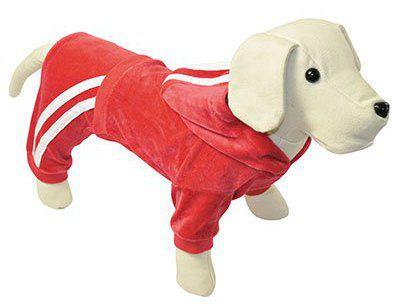 Red Velvet chien Chandal 45 cm 45 cm Nayeco